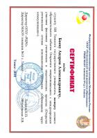 Сертификат Боева Андрея