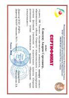 Сертификат Елисеева Андрея