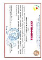 Сертификат Поповой Елизаветы