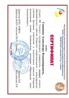 Сертификат Савинова Александра