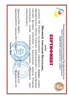 Сертификат Шилиной Анастасии